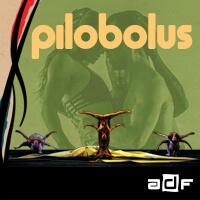 Pilobolus 200x200.jpg