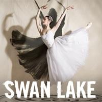 Swan Lake 200x200.jpg
